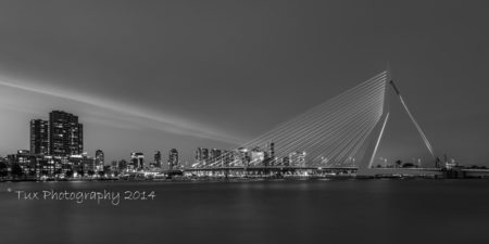 Erasmusbrug in Rotterdam in zwart-wit | Tux Photography Shop